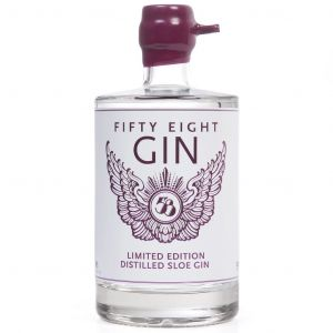 https://cdn.webshopapp.com/shops/286243/files/313909914/58-gin-distilled-sloe-50cl.jpg