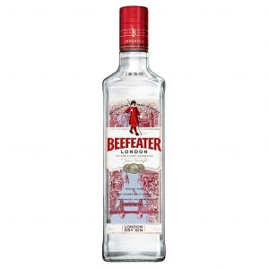 https://cdn.webshopapp.com/shops/286243/files/311329204/beefeater-london-dry-gin-70cl.jpg
