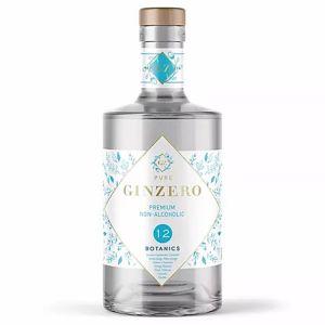 https://cdn.webshopapp.com/shops/286243/files/326265437/ginzero-botanical-non-alcoholic-70cl.jpg