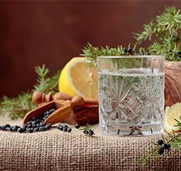 Hoe maak je een Gin Tonic