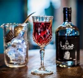 Classic Cocktail - Martinez